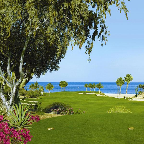 palmilla-golf_3rd_tee