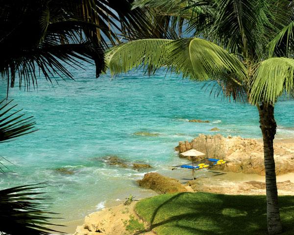 palmilla-hammock
