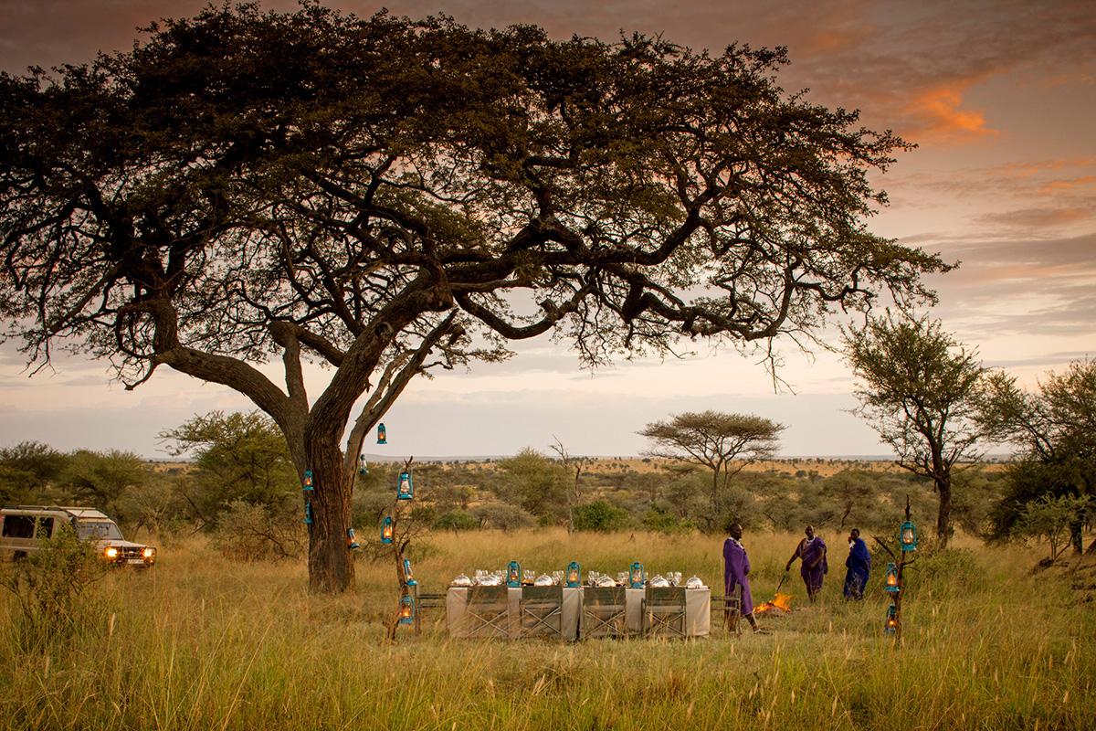 FourSeasons_Serengeti-travelmodus