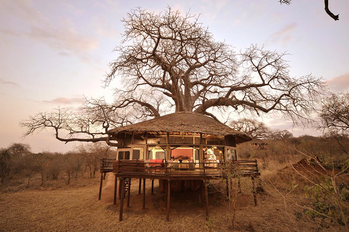 tarangire-treetops-travelmodus