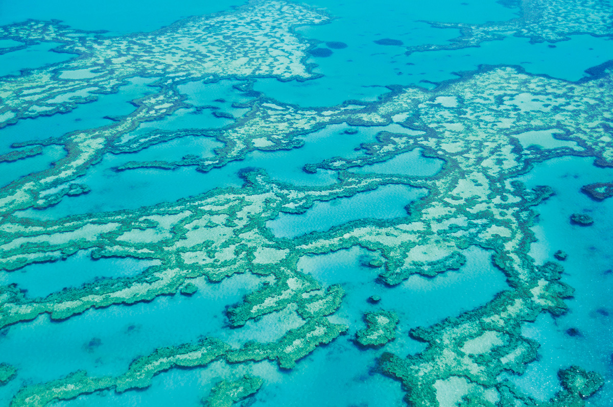 GREAT-BARRIER-REEF-travelmodus