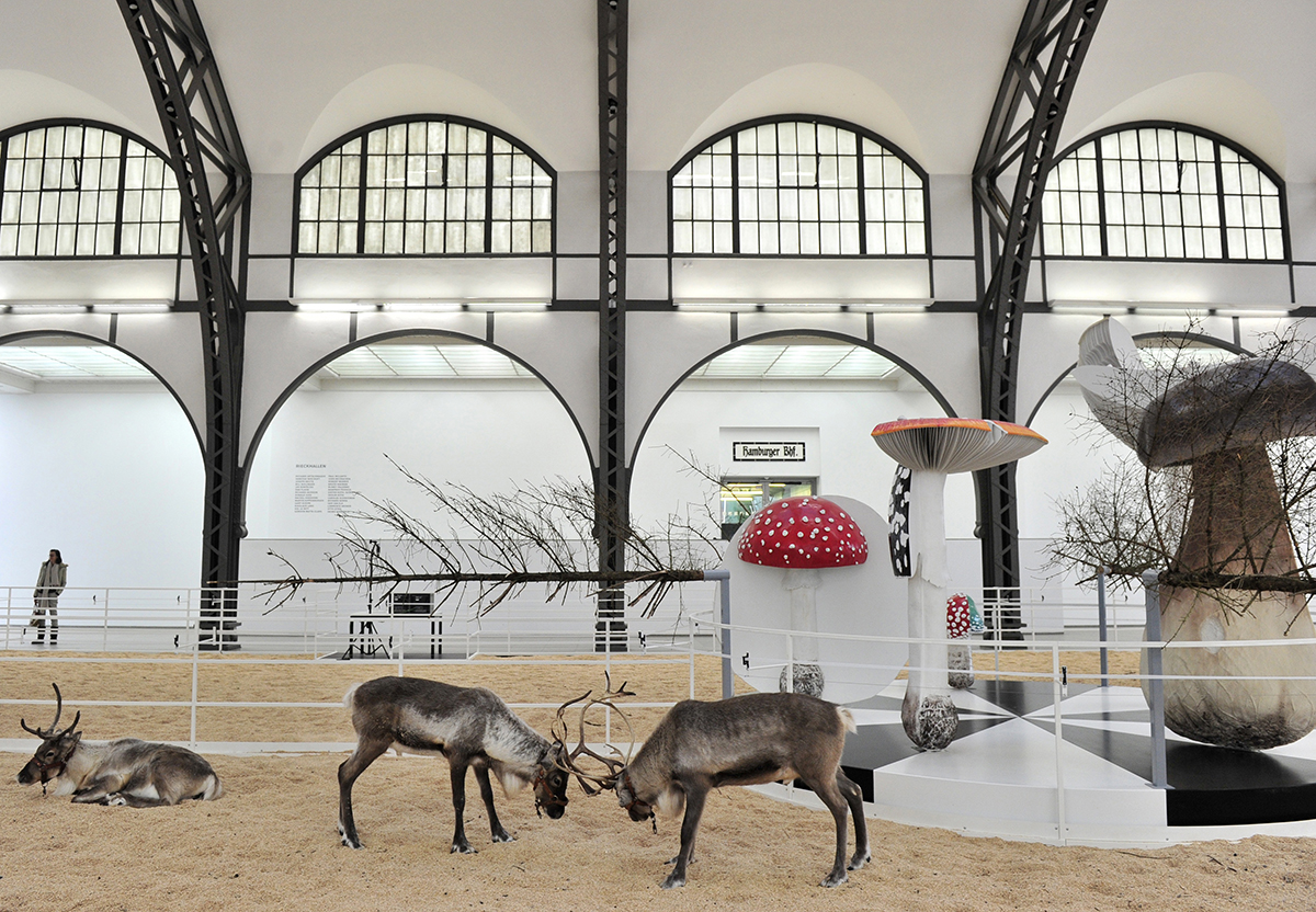 "Two reindeer lock horns in the main hall of Berlin's Hamburger Bahnhof museum for contemporary art, part of ""Soma"", an installation by Belgian artist Carsten Hoeller November 3, 2010. The installation which invites participants to spend a night in the museum, on an elevated bed, surrounded by live reindeer and birds will open on November 5, 2010 until February 6, 2011. One night for two costs 1.000 euros. AFP PHOTO / JOHN MACDOUGALL (Photo credit should read JOHN MACDOUGALL/AFP/Getty Images)"