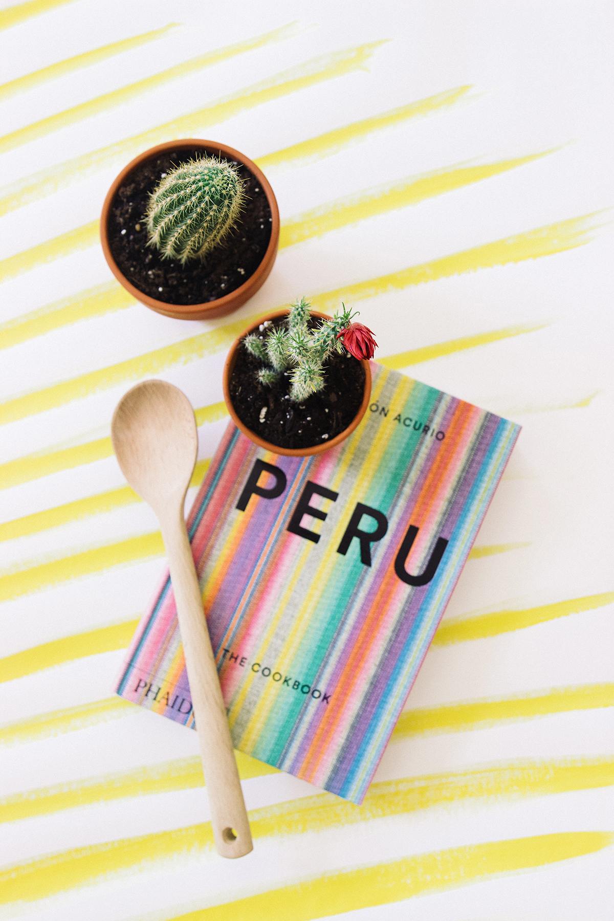 Peru-Cookbook-travelmodus